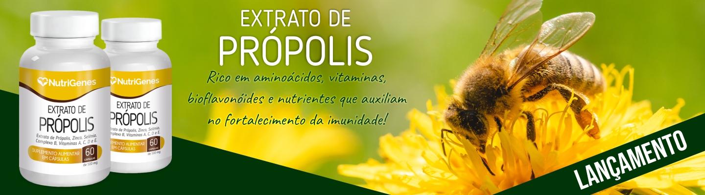 Própolis Novo